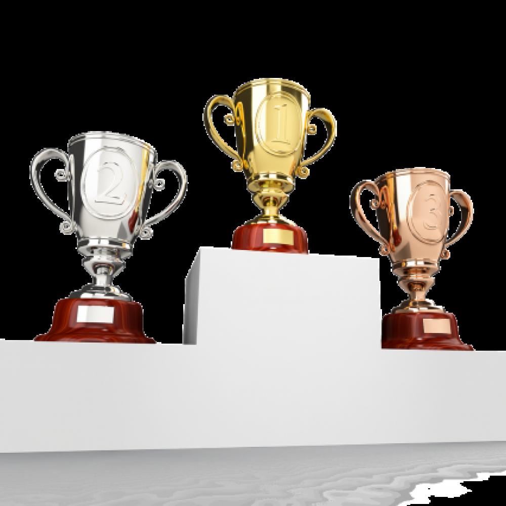 Cena entrega de trofeos 2017, 4 de noviembre en Binicomprat