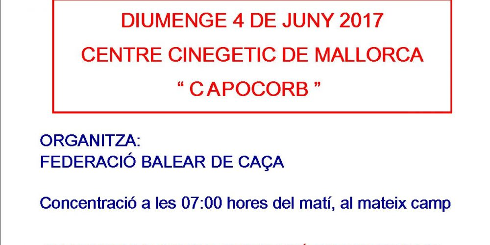Campeonato de Baleares | Caça de guatleres amb ca de mostra