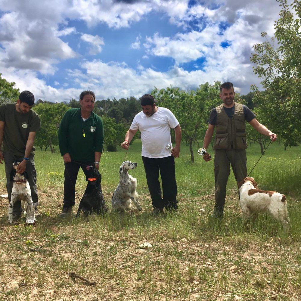 """Resultados del Campeonato de Mallorca de """"Prova de Camp de cans de Mostra"""""""