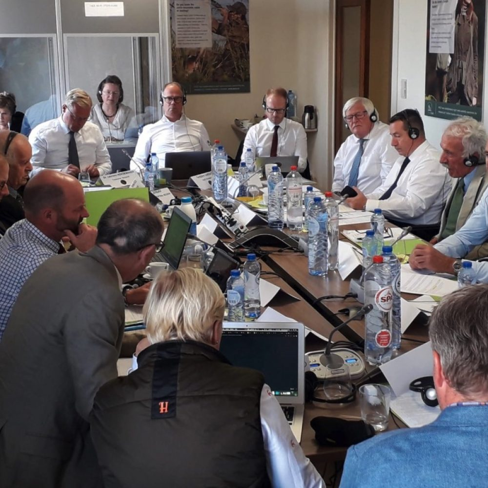 La RFEC defiende el futuro de nuestras modalidades tradicionales en la reunión de los miembros de FACE
