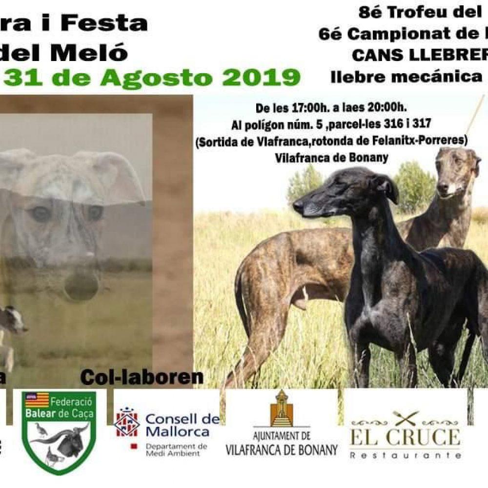 """Campeonato de Baleares de """"Cans llebrers amb llebre mecánica per clubs"""""""