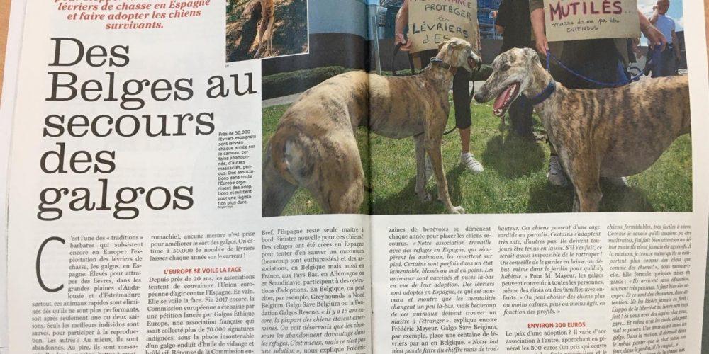 La RFEC y la FACE denuncian la brutal campaña anticaza en Europa