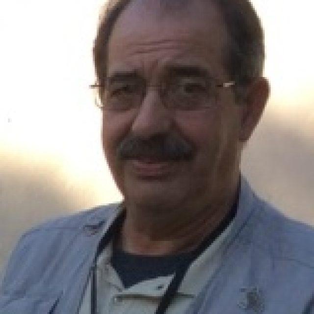 D. Guillermo Borrás Figuerola
