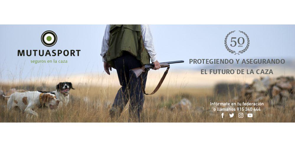Salgo a cazar con mi perro, ¿Mi seguro de caza también lo cubriría?
