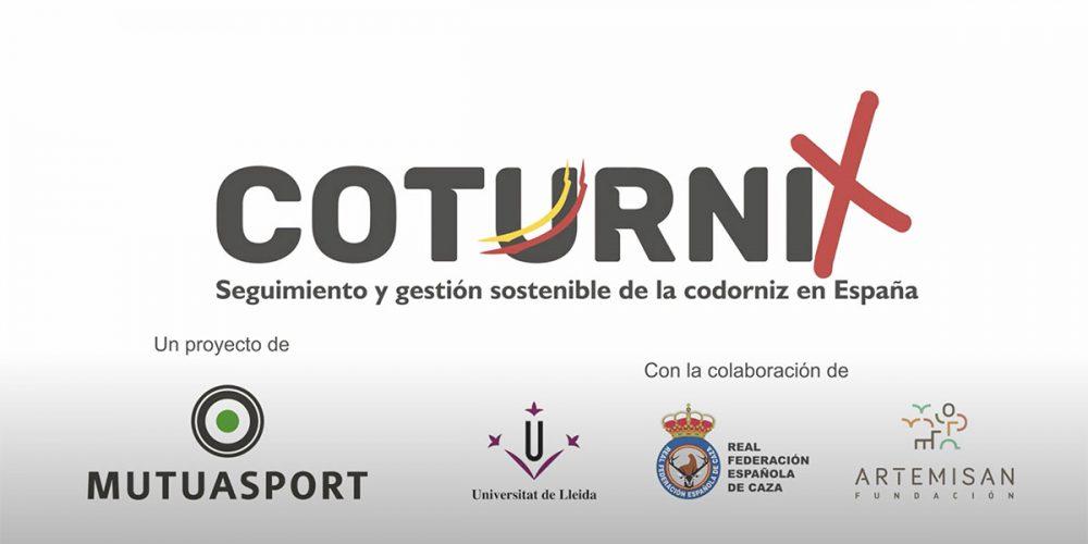 En marcha el Proyecto Coturnix: Seguimiento y Gestión Sostenible de la codorniz  