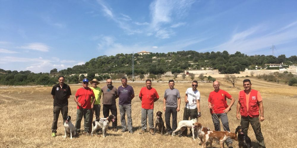 Clasificación de la Copa President de Cans de Mostra  de Camp