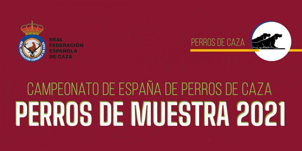 Abiertas las inscripciones para el Campeonato de España de Perros de Muestra | Perros de Caza 2021