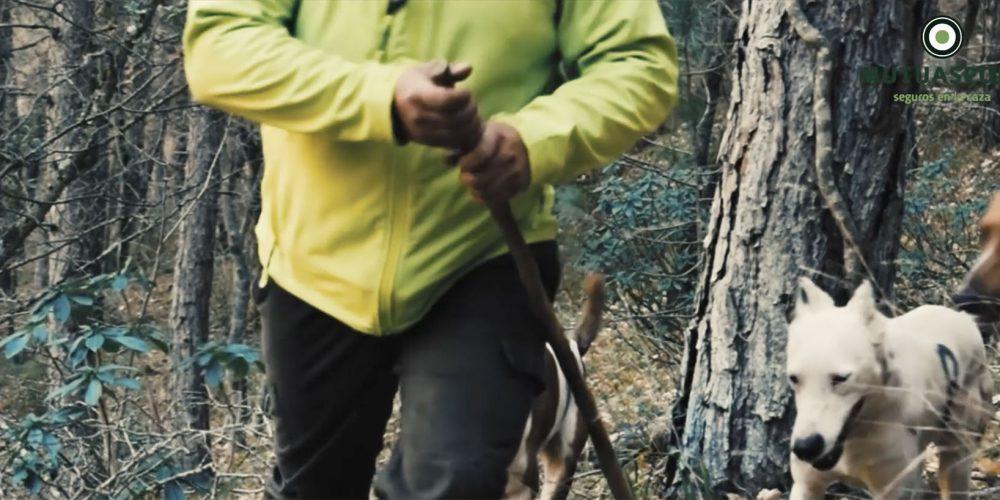 Los cazadores federados invierten medio millón de euros en defender la caza con proyectos para el zorzal y la codorniz